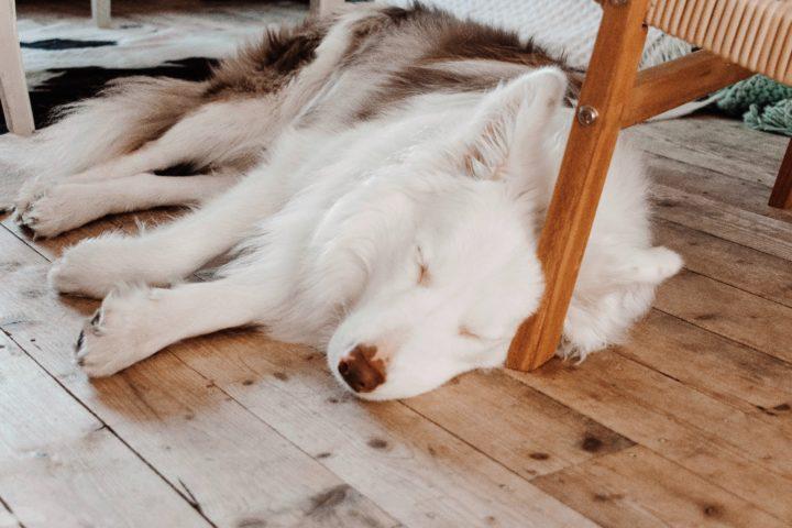 The Benefits of Sleeping On The Floor